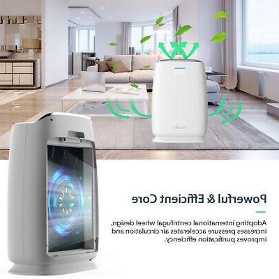 2in1 air cooler air purifier cooling fan