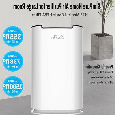 Large Purifier Home Air Allergies