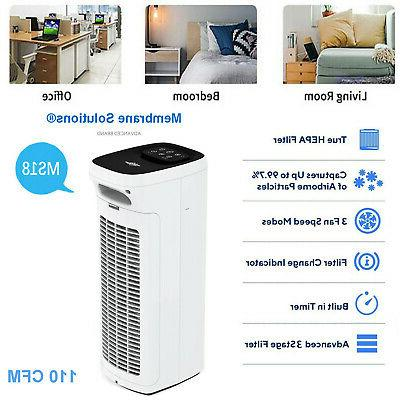Home Air Room Mold