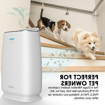 Home Air Purifiers Large Room Mold